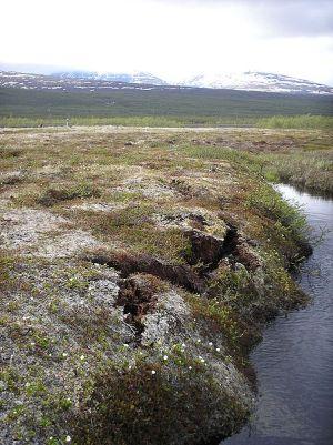 איזור Storflaket בשבדיה, מקום שבו כפור העד מפשיר. צילום: מתוך ויקיפדיה