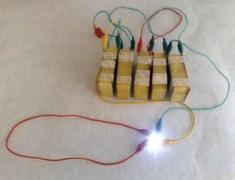 סוללות מתפוחי אדמה מבושלים. צילום: חברת יישום