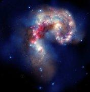 """גלקסיות האנטנה: שילוב תמונות של טלסקופי החלל האבל, שפיצר וצ'אנדרה, אוגוסט 2010. צילום: נאס""""א"""