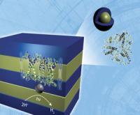 ניתוח פיזור ניטרונים מגלה מבנה מרובד של חומר מרוכב המתארגן בעצמו ומיצר מימן