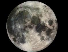 """הירח המלא. צילום: נאס""""א/JPL"""