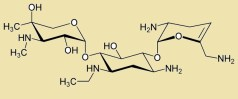 תרכובת ה-netilmicin (מתוך וויקיפדיה).