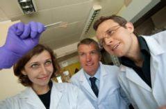 צוות חוקרים באוניברסיטת וורוויק בבריטניה שגילו דרך לייצר תאי שמש אורגניים