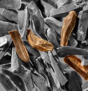 תמונה של להבי צור במערת קסם צילום: פבל שרגו/המכון לארכיאולוגיה אוניברסיטת תל-אביב