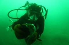 חוקר שצולל בים המלח. צילום: courtesy Dr. Manfred Sclosser, Max Plank Institute