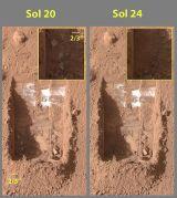 """חפירות קרקע במאדים על ידי הזרוע הרובוטית של נחתת הפניקס בשנת 2008. צילום: נאס""""א"""
