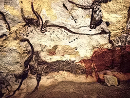 שור הבר - ציור במערת לסקו, צרפת. מתוך ויקיפדיה
