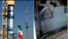 שיגור קוף לחלל בידי אירן, 28 בינואר 2013. צילום מסך מתוך הטלוויזיה האירנית
