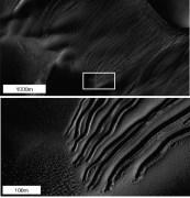 """תמונה זו שצולמה באמצעות המצלמה ברזולוציה גבוהה (HIRISE) בחללית MRO המקיפה את מאדים, מראה דוגמה של """"ערוצים ישרים"""" אותם ניתן להסביר באמצעות גושים של קרח יבש הגושים במורד דיונת חול. צילום NASA/JPL-CALTECH/UNIV. OF ARIZONA"""