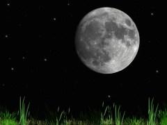 ירח מלא בלילה בהיר במיוחד. צילום shutterstock