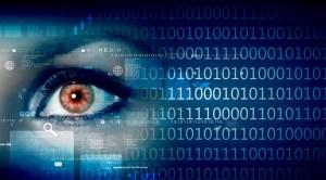 מטרתו המוצהרת של המיזם היא לשים קץ לתופעת זיוף תעודות הזהות והדרכונים, אך הסיכון הוא שהמידע ידלוף החוצה ויפגע בפרטיות האזרחים. איור: shutterstock