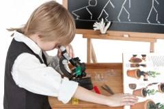 לימוד אבולוציה בבתי הספר. צילום: shutterstock