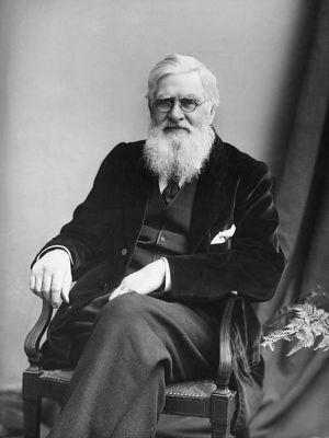 אלפרד ראסל וואלאס בצילום משנת 1895. מתוך ויקיפדיה