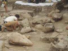 מרתף יין בן 3,700 שנה בתל כברי. צילום: אריק קליין.