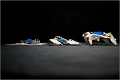 תמונה: צוות ממכוני Wyss ו- SEAS מאוניברסיטת הרווארד, ומ-MIT בנה רובוט אוטונומי שמתחיל את דרכו כצורה דו-ממדית המתוכנת לקפל את עצמה לצורה מורכבת ולזחול למרחק ללא כל התערבות אנושית. צילום: Wyss המכון של אוניברסיטת הרווארד