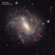 תמונת התגלית (כוכבים משתנים בגלקסיה סמוכה)