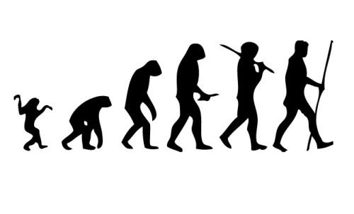 שרשרת האבולוציה מהקוף לאדם. נחמדה אבל לא כל כך מדויקת. מתוך ויקיפדיה