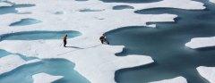 משטחי קרח בקוטב הצפוני. תצלום: NASA