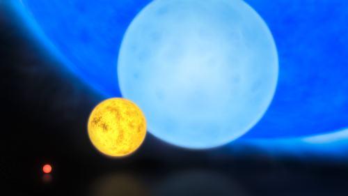 """השוואה בין גדלי סוגי כוכבים שונים. משמאל לימין: ננס אדום, עם מסה של כ-0.1 זו של השמש; """"ננס צהוב"""", כמו השמש שלנו; """"ננס כחול"""" שלו כ-8 מסות שמש; והכוכב הענק R136a1, שלו כ-300 מסות שמש. מקור: ESO/M. Kornmesser."""
