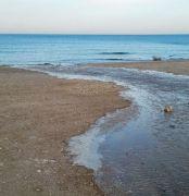 """הביוב זורם לים בחיפה ב-2015. צילום: ד""""ר איל רהב."""