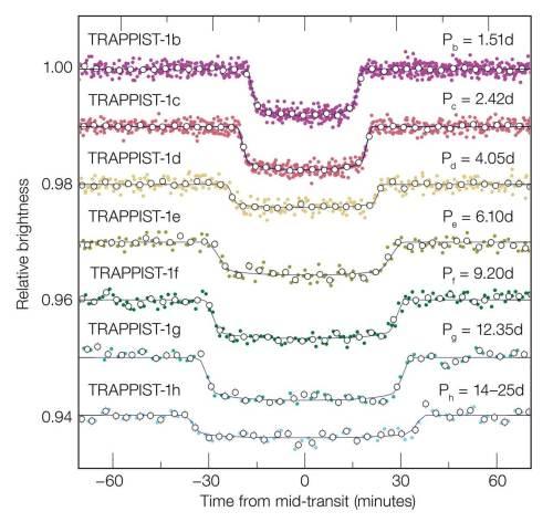 """תרשים המראה את עקומות האור של כל אחד מכוכבי הלכת של TRAPPIST-1. שיטת הגילוי הלא-ישירה מכונה """"ליקוי"""" (טרנזיט), מסיקה את קיומם של כוכבי הלכת באמצעות עמעום האור של הכוכב שהם גורמים לו, כאשר הם עוברים בינו לבין הצופה - הטחסקום בחלל או בכדור הארץ. ניתן לראות שככל שכוכבי הלכת הגדולים הם יוצרים עמעום גדול יותר, וככל שהם רחוקים יותר העמעום נמשך זמן רב יותר מכיוון שמהירות הסיבוב שלהם איטית יותר. מקור: ESO/M. Gillon et al."""