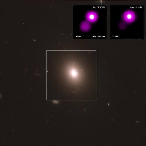 """תמונה זו מספקת שלוש נקודות מבט שונות על התפרצות קרני הגאמא GRB150101B, הדומה לאירוע שבו נמדדו גלי כבידה ובו זמנית גם בספקטרום האלקטרומגנטי וקיים דמיון בין שני המקרים. במרכז, תמונה מטלסקופ החלל האבל מראה את הגלקסיה שבה התרחשה התפרצות GRB150101B. בפינה העליונה, שתי תמונות רנטגן ממצפה הרנטגן צ'אנדרה של נאס""""א מראות את האירוע כפי שהוא הופיע ב -9 בינואר 2015 (משמאל), וכפי שנראה כחודש לאחר מכן , ב -10 בפברואר 2015 (מימין), כשהילת הפיצוץ נמוגה, נקודת האור הבוהקת היא הגרעין של הגלקסיה. צילום: NASA/CXC"""