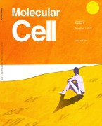 איור: שער כתב העת Moleculer Cell שהקדיש את עמוד השער שלו למחקר הישראלי