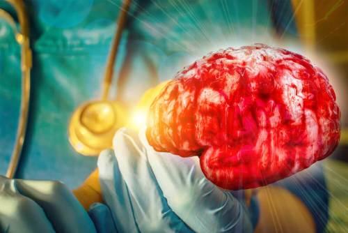 חקר המוח. איור: shutterstock