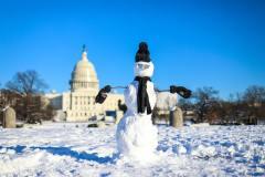 שלג בוושינגטון, 14/1/2019. צילום: Shutterstock.com