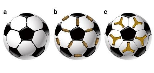 """באיור: שלוש אסטרטגיות אפשריות לבניית כדורים מאריחים מחומשים. משמאל לימין: a - אריחים הנדבקים אלו לאלו באופן ישיר, b - אריחים הנקשרים באמצעות מחברים קוויים, c - אריחים הנקשרים באמצעות מחברים משולשים. פרופ' אהוד קינן וד""""ר אפרת סולל. הטכניון"""