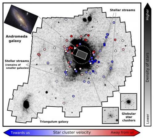 """תמונה: אנדרומה """"אכלה"""" הרבה גלקסיות קטנות יותר במיליארד השנים האחרונות, כוכבים רבים נותרו בחוץ בזרמים עצמאיים. איור: מקי דוגאל, ANU"""