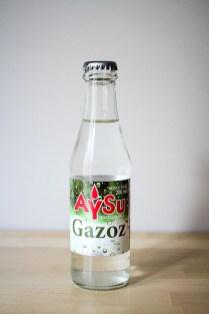 Aysu Gazoz - Denizli