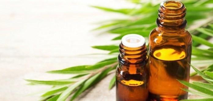 Çay Ağacı Yağı İle Egzama Tedavisi