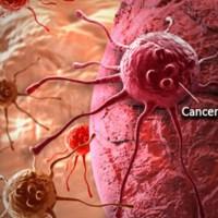 هذه هي أفضل طريقة للوقاية من السرطان