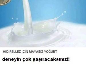 Hıdırellez için mayasız yoğurt nasıl yapılır