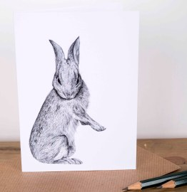 Bunny Greetings Card