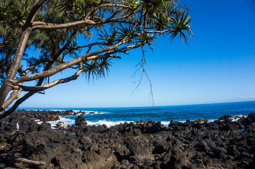 Views along the Road to Hana with Valley Isle Excursions