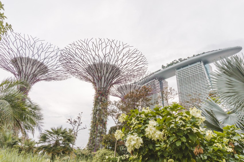 Singapore photos: Gardens by the Bay