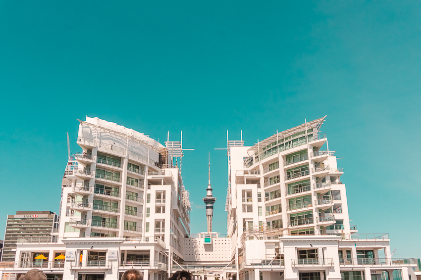Things to do in Auckland: Auckland Harbour Cruise