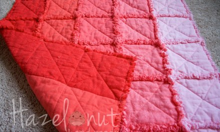 Soft, Fuzzy, Pink and Coral Ombre Quilt