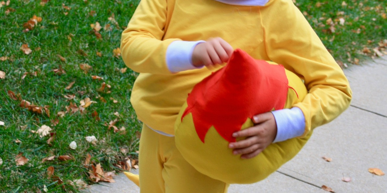 Handmade Pokemon Costumes