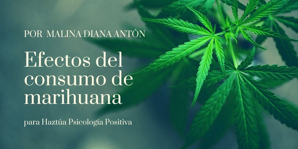 efectos del consumo de marihuana