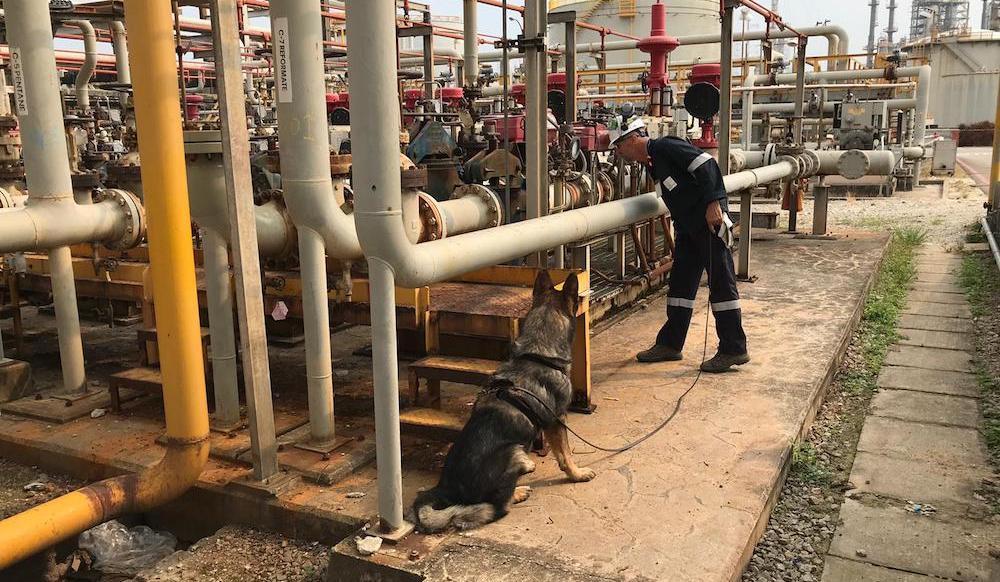 Leak detection: Emission impossible