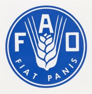 FAO - WFP