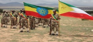 Liyu police - éthiopia