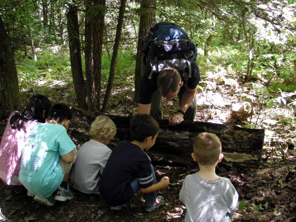 During this year's KidFest scavenger hunt, young participants will look for and learn about Grandfather Mountain's biodiversity, including salamanders. Photo courtesy of the Grandfather Mountain Stewardship Foundation