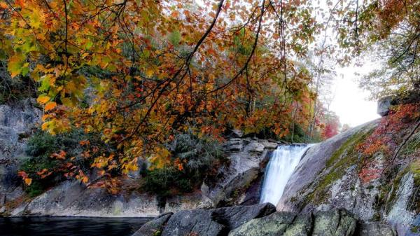 "Although leaves have peaked in the High Country, autumn remains colorful and vibrant, as demonstrated in this photo from Elk River Falls, located near the North Carolina-Tennessee border. According to Dr. Howie Neufeld, Appalachian State University professor of biology and ""Fall Color Guy,"" locations lower than 3,000 feet above sea level are still working their way up to peak, while those below 2,500 feet are still predominantly green. As such, the view from high-elevation locations should make for colorful leaf-looking. For more fall color photos, click here: http://bit.ly/1QTBQjY Photo by Skip Sickler"