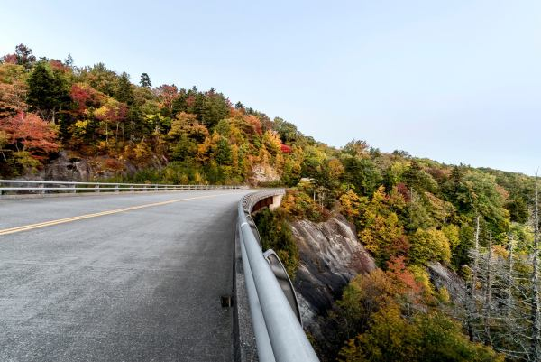 "Fall color is speeding up along the Blue Ridge Parkway, illustrated by some bright reds, yellows and oranges at the Stack Rock Bridge. According to Dr. Howard Neufeld, ""Fall Color Guy"" and professor of biology at Appalachian State University, cool mornings, moderate daytime temperatures and abundant sunshine have accelerated leaf color development in the High Country. In fact, since last weekend, hillsides in the 3,000 to 4,500 elevation range have seen a 30 percent increase in fall color, Neufeld said. Photo by Skip Sickler 