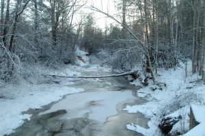 Much of Laurel Creek was frozen on Tuesday morning. Photo by Jesse Wood