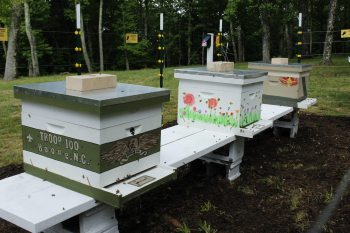 Bees2